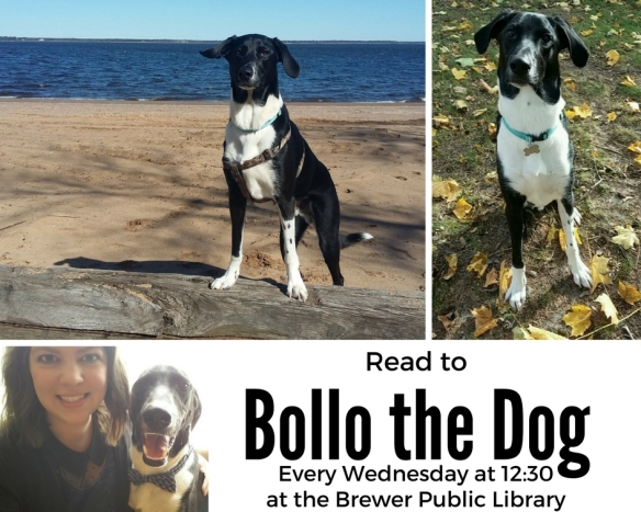 Read to Bollo the Dog!